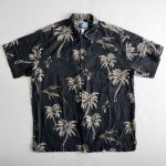 Hawaii, AFTCO-BLUEWATER, kzyshop